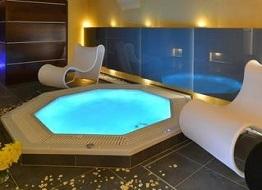 hotely s wellness vysočina